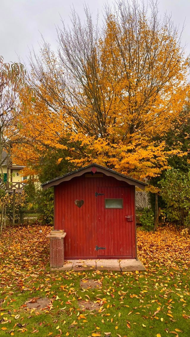 red garden shed photo reference